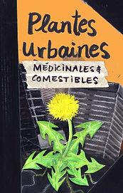 Plantes urbaines.jpg