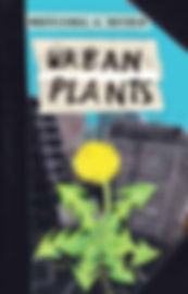 urban plants.jpg
