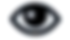 Visual Learning Icon - Black.png