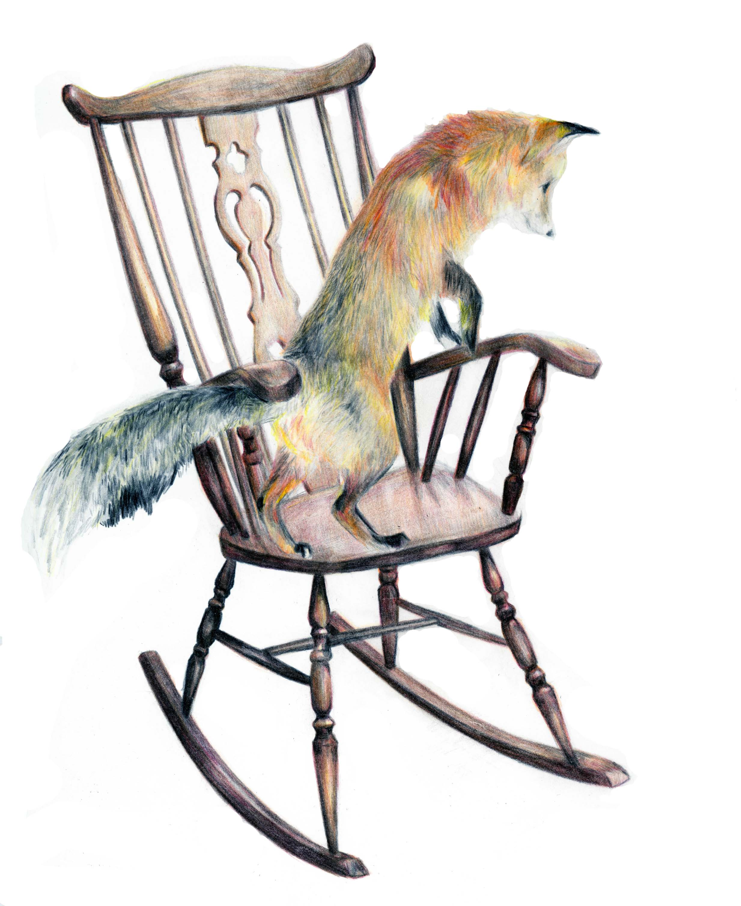 Fox on chair