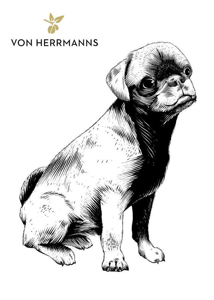 verpackungs-illustration-von-herrmanns-k