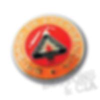 boton-pin-broche-brigda-de-emergencia-laranja-prevenir-combater-salvar