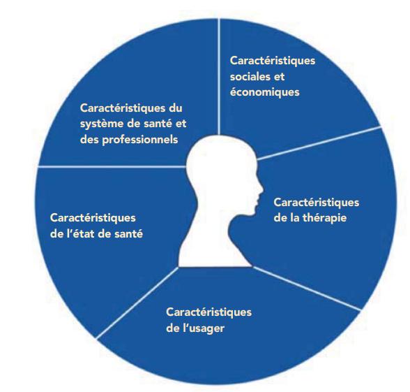 Classification des facteurs associés à la non-adhésion. Cercle divisé en 5 sections. Section 1 : caractéristiques sociales et économiques. Section 2 : caractéristiques de la thérapie. Section 3 : caractéristiques de l'usager. Section 4 : caractéristiques de l'état de santé. Section 5 : caractéristiques du système de santé et des professionnels. Au centre de l'image se trouve la silhouette d'un visage.