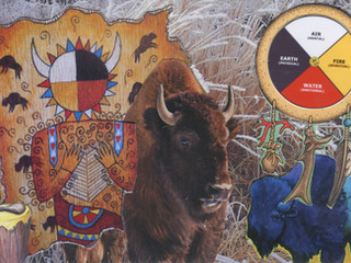Buffalo Elder