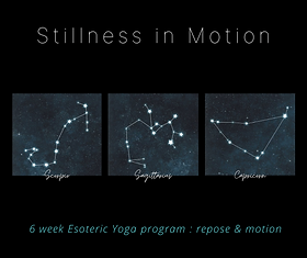 Stillness in Motion.png
