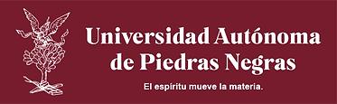 PAGINA-WEB-UAPN.png
