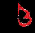 stephenBarry Logo