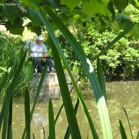 Brooklands Cottages, Caravan Park and Fishing, Brompton-by-Sawdon