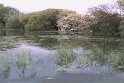 Brickyard Farm Lakes, Amotherby