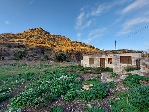 House for sale in the plain of Eressos Lesvos