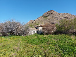 For sale house 40sqm kitchen 10sqm and property 3000sqm in the plain of Eresos Lesvos7