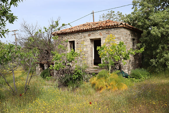 For sale in Psiniα a buildable estate with a house of 7000sqm with Sea view