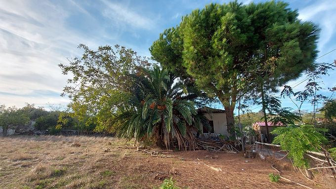 A plot of land with a house for sale in the plain of Eresos Lesvos.