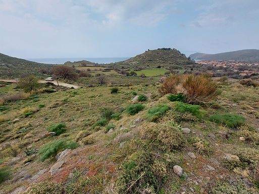 For sale in Skala Eressos a plot with panoramic views
