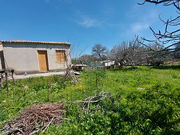 For sale a house of 20sqm with a property of 1000sqm in the plain of Eressos Lesvos