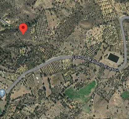 Land for sale in the area of Psinia Eressos buildable