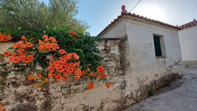 A small stone house with a large yard for sale in Eressos Square Lesvos