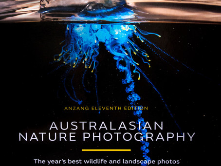 Australian Geographic ANZANG Nature Photographer of the Year