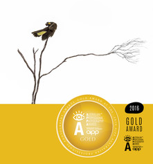 Aipp APPA Gold Award