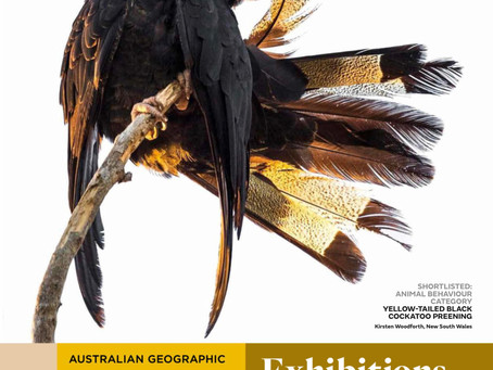 Australian Geographic Nature Photographer of the Year