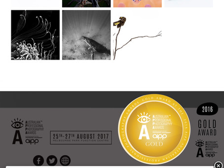Australian Professional Photography Awards - Gold Award