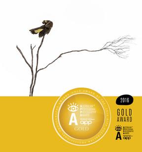 Gold Award Aipp APPA 2016