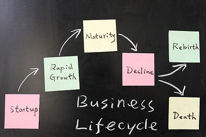 Business lifecycle  concept on blackboar