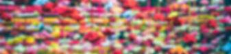 nikunj-gupta-224168.jpg