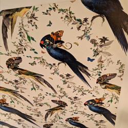 Bird Pattern Ceiling