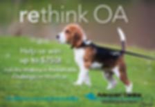 5892+Rethink+OA+Image+640x441px+SHELTER-