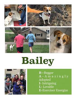 Bailey Has a Family!