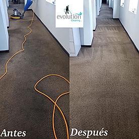 Limpieza de alfombras comercial y residencial a shampoo y vapor.