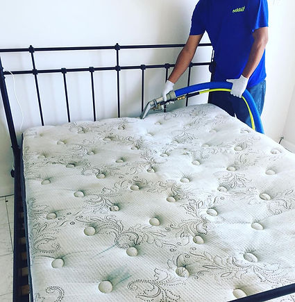 Mattress steam cleaning. Elimination of mites and bacteria.
