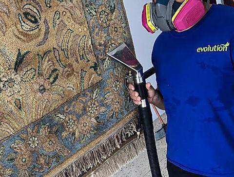 limpieza de alfombras persa