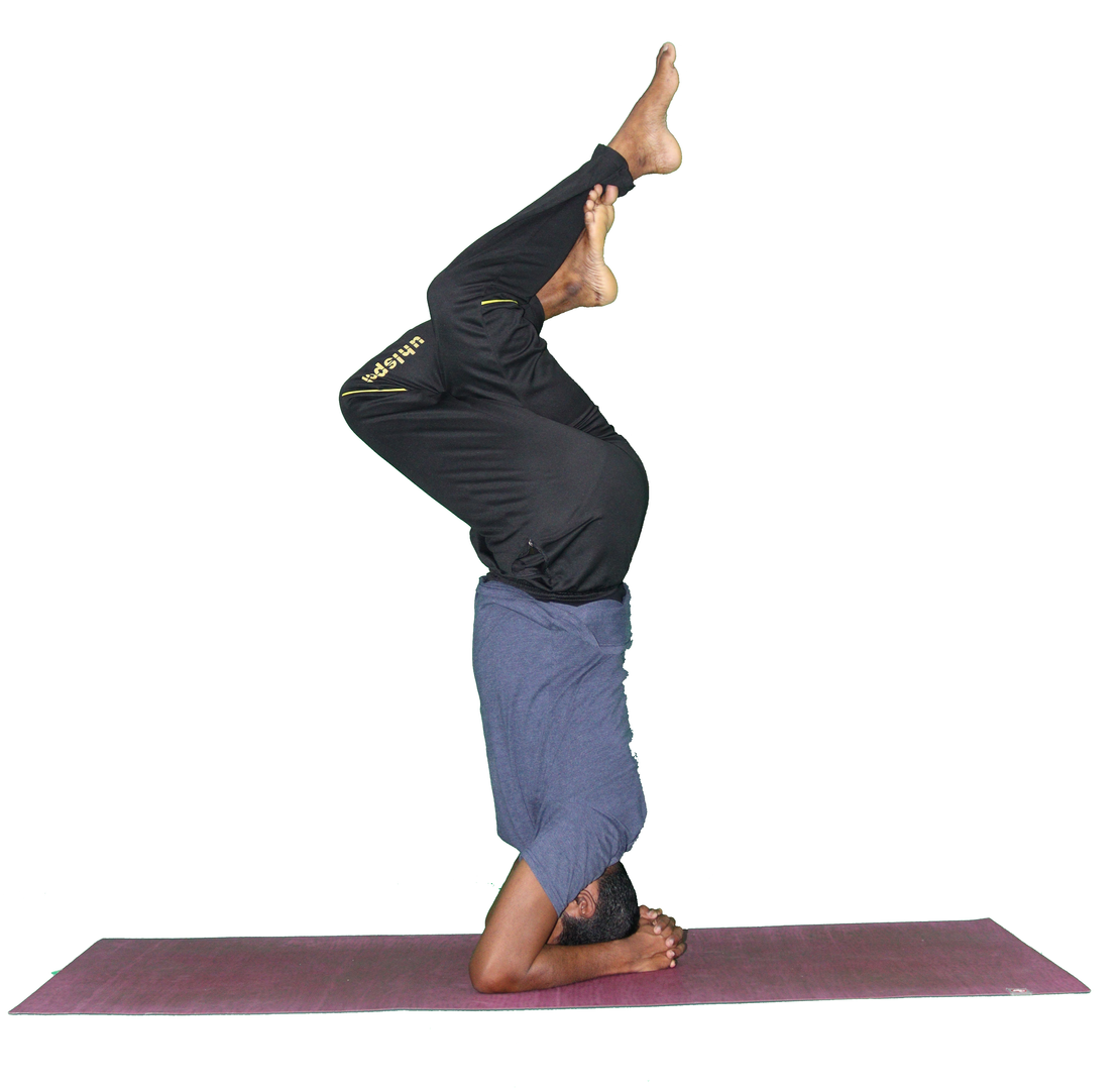 eagle Headstand.png