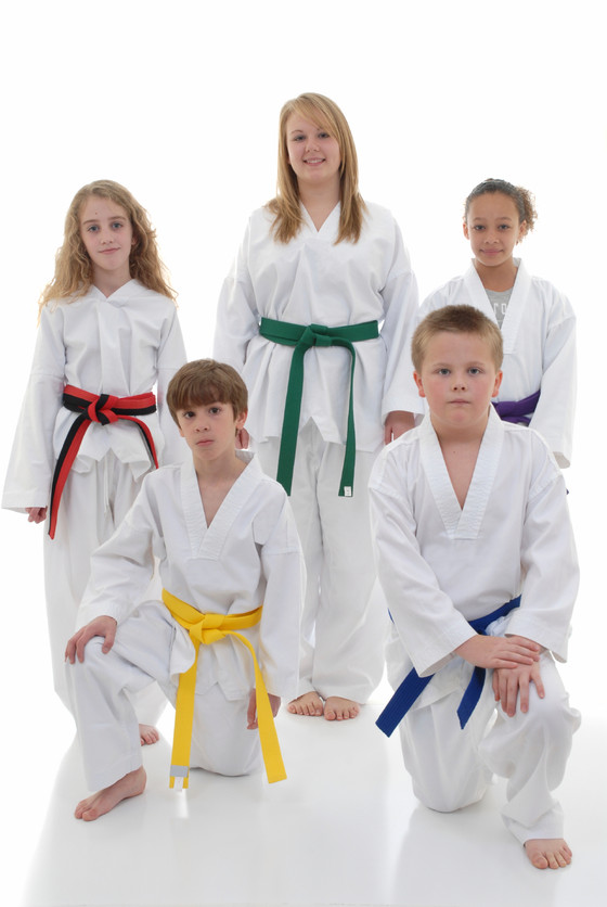 Get them off the couch and into the Dojo! Prepare your child for success in every aspect of their li