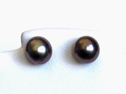 Aubergine Tahitian Pearl Stud Earrings
