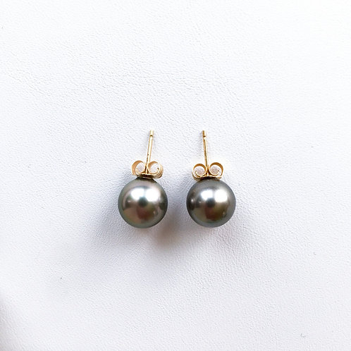 Light Gray Tahitian Pearl stud earrings, 9 x 9.5 mm
