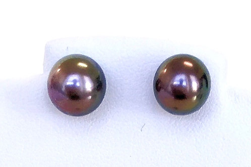 Aubergine Tahitian Pearl stud earrings, 9.5 x10 mm