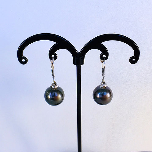 Dark Tahitian Pearl dangling earrings
