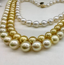 South Sea Pearl necklaces, Gold, Champag
