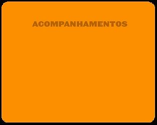 Acompanhamentos1.png