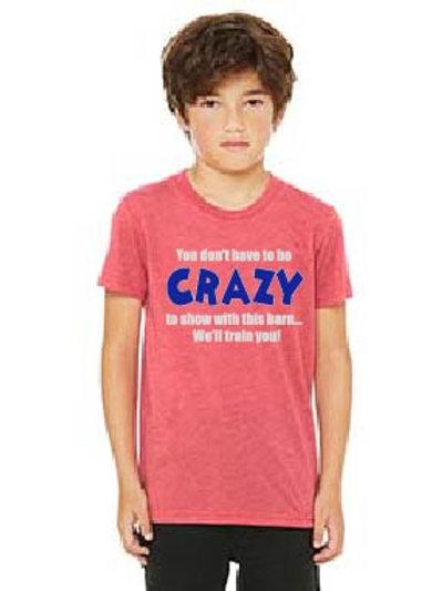 Bella + Canvas Youth Triblend Short-Sleeve T-Shirt