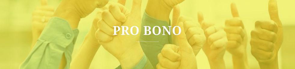 Pro%20Bono_edited.jpg
