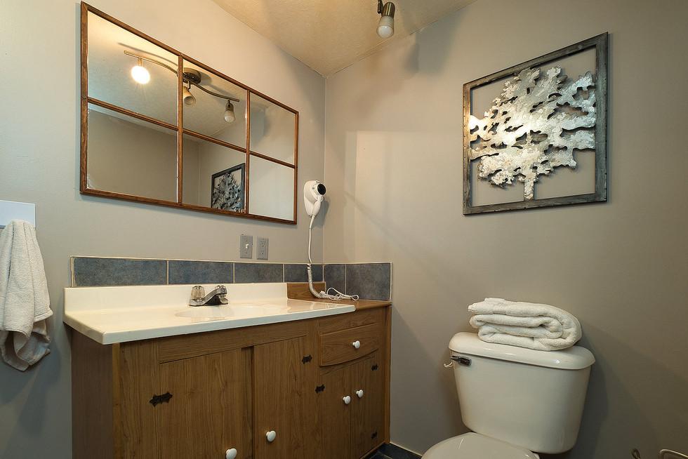 Basement Bathroom 2 - 294 Maurice For Sale