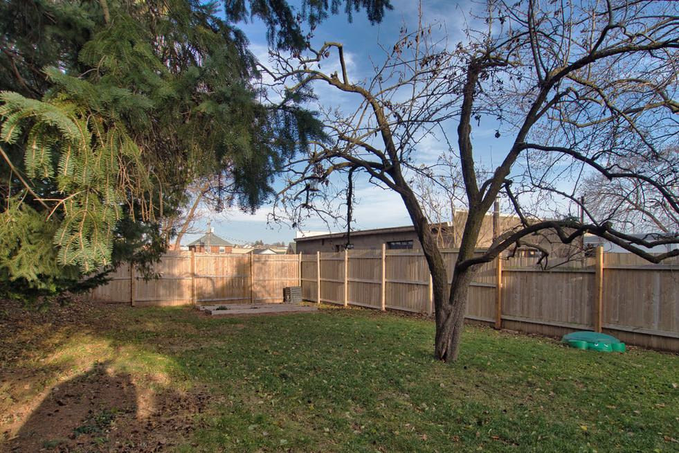 Backyard - 410 Courtland Ave E