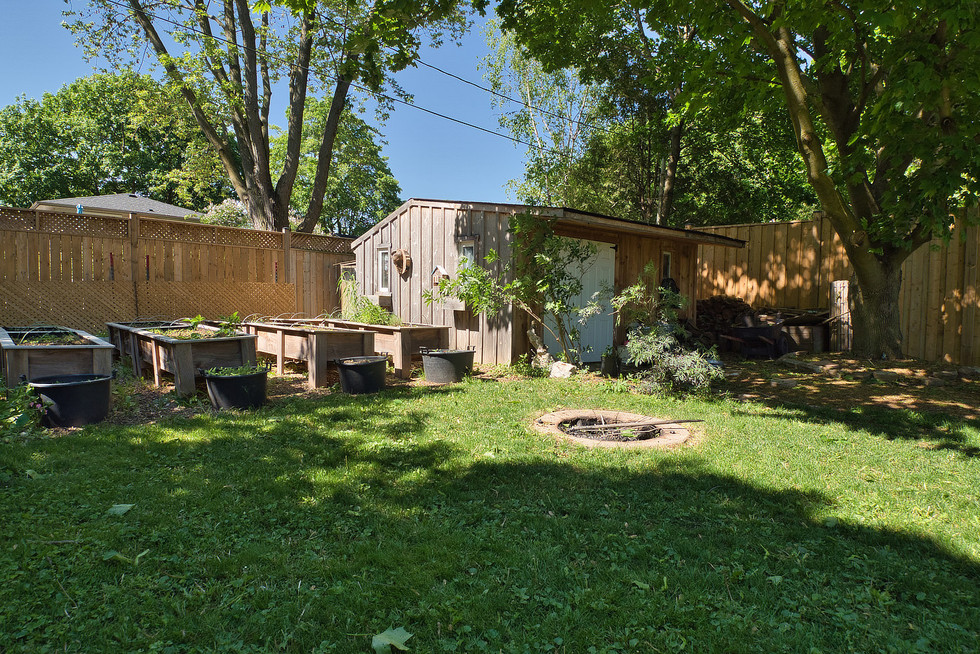 Backyard 3 - 1 Tanager For Sale