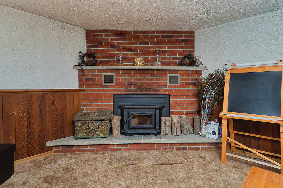 Basement Fireplace - 1 Tanager For Sale