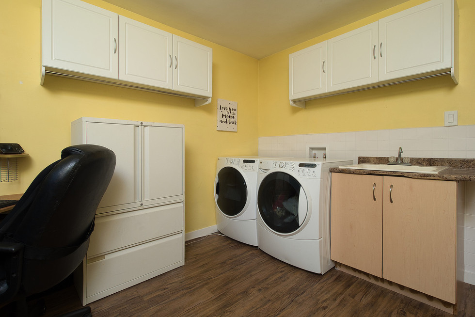 Laundry 2 - 1 Tanager For Sale