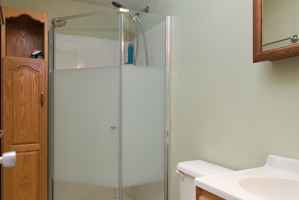 Basement Bathroom - 1 Tanager For Sale